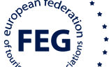 Logo FEG Dark Blue